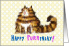 Birthday Humor - Happy Purrthday - Maine Coon Cat card