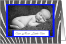 Zebra print Birth Announcement Boy card