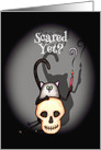 Funny Scared Yet Cat with Skull Halloween card