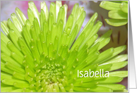 Vibrant Green Flowers, Customize Name Isabella Birthday Card