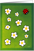 Spring Begins - ladybird themed cards