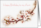 Happy Birthday Aunt - white crab apple blossoms card