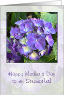 Happy Mothers Day to Stepmother - blue hydrangea card