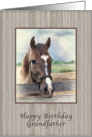 Birthday, Grandfather, Brown and White Horse card