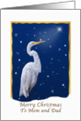Christmas, Mom and Dad, Great Egret Bird card