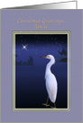 Christmas, Uncle, Religious, Nativity, Egret card