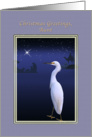 Christmas, Aunt, Religious, Nativity, Egret card