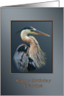 Birthday, Grandpa, Great Blue Heron Bird on Gray and Silver card