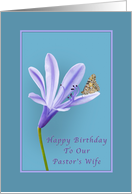 Birthday, Pastor's Wife, Lilac Daylily Flower and Butterfly card