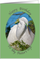 Pastor's Wife's Birthday Day Card with Napping Egret card