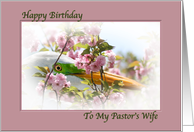 Pastor's Wife Birthday Card with Egret and Pink Flowers card