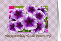 Happy Birthday, Pastor's Wife, Petunias, Purple and White card