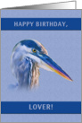 Birthday, Lover, Great Blue Heron card
