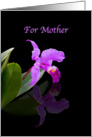 Birthday, Mother, Orchid on Black card