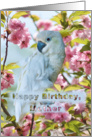 Birthday, Mother, White Parrot card