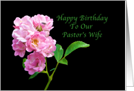 Birthday, Pastor's Wife, Pink Garden Roses on Black card