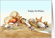 Down By The Sea - Sea Shell Birthday card