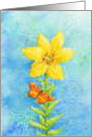 Blank Note Sunshine Lily And Butterfly card