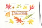 Blank Note Autumn Leaves Botanical Variety card