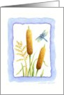 Blank Note Card Cattails & Dragonfly card