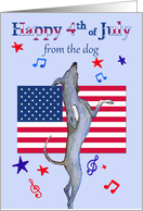 Happy 4th July, from the dog, dancing greyhound dog & American flag card