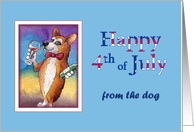 Happy 4th of July, from the dog,corgi dog drinking a glass of red wine card