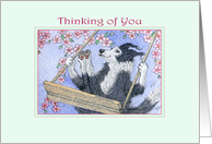 Border Collie Dog Swinging in the Blossom, Thinking of You card