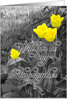 Invitation, Wedding, Photographer, Yellow Tulips on Black and White card