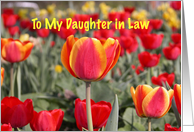 Happy Easter To my Daughter in Law - Red and Yellow Tulip Garden card
