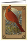 Cardinal in Winter - Art Card