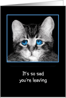 It's so sad you're leaving, I'll miss you! Sad blue-eyed kitten card