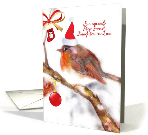 Merry Christmas to my Step Son and Daughter-in-Law, robin card