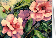 Happy Birthday, Pink Camellias, Watercolor Painting, Irish Blessing card