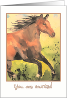 you are invited, kids birthday party, horse card