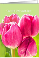 happy birthday in Bulgarian, bright pink tulips card