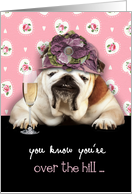 Happy Birthday for Her, Over the Hill, Humor Birthday Card, Bulldog card