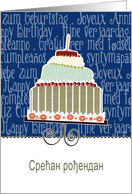 happy birthday in Serbian, cake & candle card