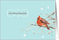 Merry Christmas in Vietnamese, red cardinal bird, watercolor card