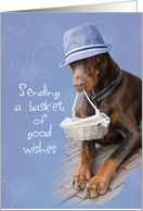 Sending Cheer Dog with Basket, Feel Better, Funny card