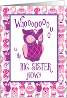 Big Sister Congratulations, Awesome Owl card