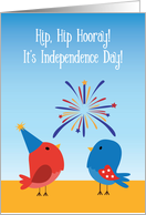 Cute Birds Watching Fireworks, Happy 4th of July for Kids card