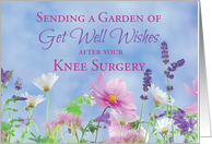 Get Well After Knee Surgery, Garden with Flowers card