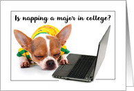 Back to School College Funny Napping Dog on Laptop Computer card
