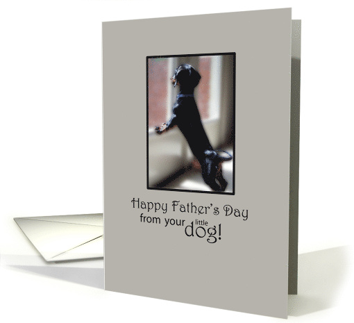 Happy Father's Day from Your Little Dog card (180764)