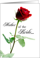 Thank You for Mother of the Bride with Long Stemmed Rose, Wedding card