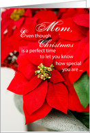 Mom Poinsettia Seasons Greetings, Christmas card