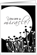You Are a Miracle, Birthday Recovery, 12 Step, Addiction, Full Moon card