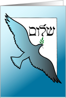 Passover Peace Dove card