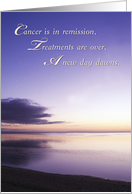 Cancer in Remission, Support card
