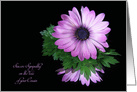 Loss of Cousin sympathy, purple daisy reflection on black card